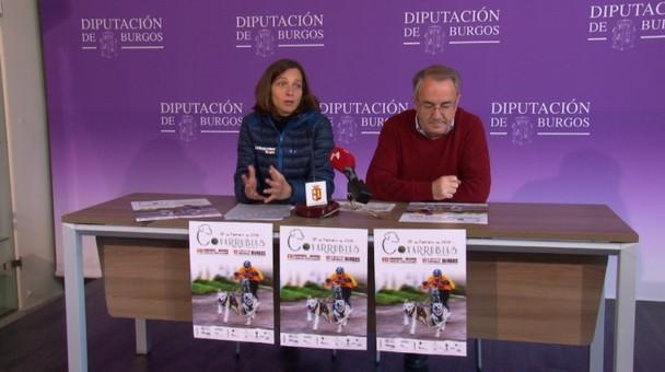 Covarrubias acogerá este domingo 25 la VIII edición del Canicross-Mushing Trofeo de Diputación