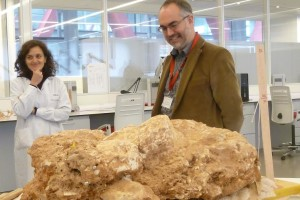 El CENIEH celebra la Semana de la Ciencia con numerosas actividades