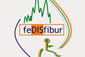 Mañana martes a las 19h Fedisfibur hace entrega de sus Premios 2019