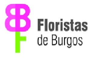 Flojabur espera estabilidad en el consumo de flores en la festividad de Todos los Santos respecto a años anteriores