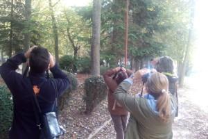 La Fundación Caja de Burgos organiza un nuevo taller de observación de aves de primavera