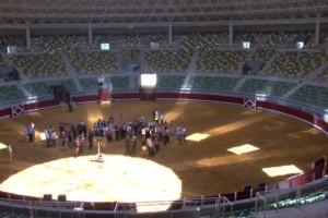 El PSOE denuncia la falta de gestión en el Coliseum