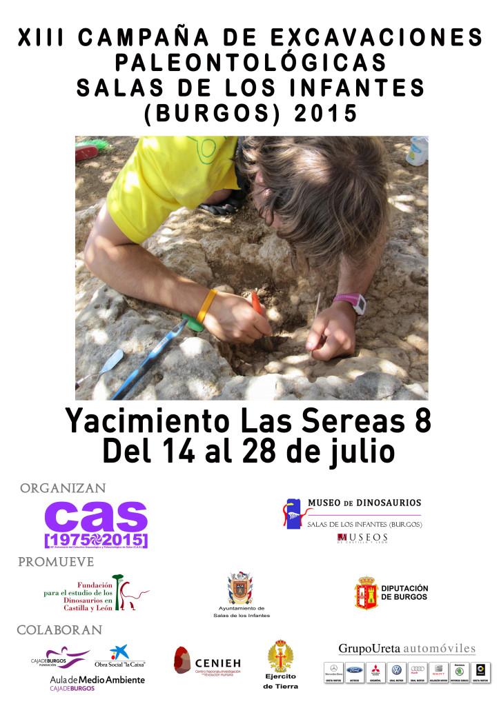 CARTEL lassereas2015 (1)
