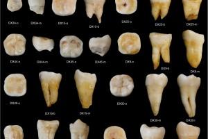 Los humanos modernos llegaron a China hace más de 80.000 años