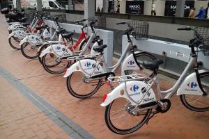El Ayuntamiento regula el tránsito de peatones y ciclistas en el Paseo del Espolón