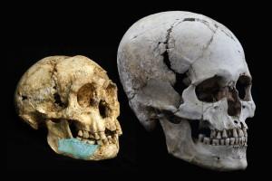 El CENIEH participa en la datación de los ancestros de Homo floresiensis