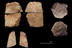 Termina la Campaña de excavación de la Cova del Bolomor con el hallazgo de nuevos restos humanos