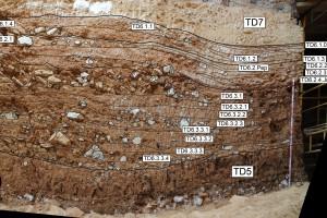 El nivel geológico de Homo antecessor muestra todos sus secretos
