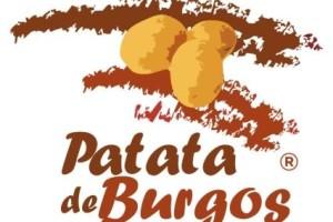 Se pone en marcha la III edición del Concurso de tortilla de Patata