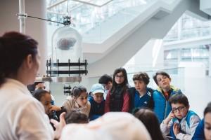 El Sistema Atapuerca recibe 24.846 visitantes en el período del 3 al 11 de diciembre