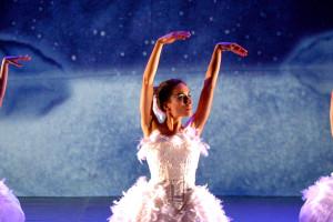 En febrero el Teatro Principal acogerá la versión teatral de El Lago de los Cisnes