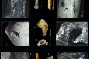 La investigadora Ruth Blasco es coautora del estudio sobre las aves del yacimiento del Paleolítico medio Grotte des Barasses II