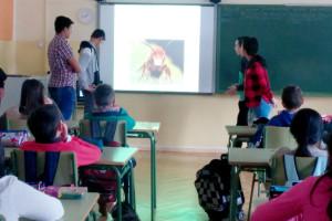 Un grupo de jóvenes del Programa de Apoyo al Menor de Cáritas Burgos (CDAM) promueve un proyecto de protección a las abejas.