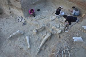 Se lleva a cabo la VIII Campaña de excavación del CENIEH en la Garganta de Olduvai
