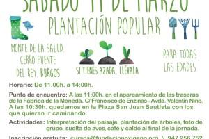 Para celebrar el Día del Árbol se realizará una plantación en el Monte de la Salud