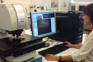 Primer estudio comparativo de técnicas de análisis microscópicas para estudios tafonómicos