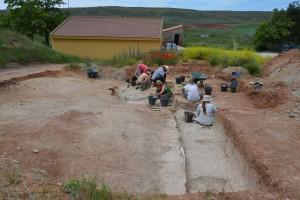 El CENIEH aborda la V Campaña de excavaciones en el yacimiento paleolítico de Ambrona