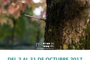 AFIBUR inaugura el día 2 de octubre su exposición Fibromialgia: Experiencias Compartidas