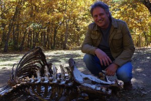 El Museo de la Evolución Humana acogerá mañana la charla 'Interacción entre carnívoros y homínido