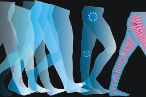 La locomoción de los homininos del Pleistoceno era igual de eficiente que la de los humanos actuales