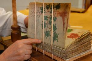 El Instituto Geográfico Nacional, primera institución pública que adquiere el Manuscrito Voynich
