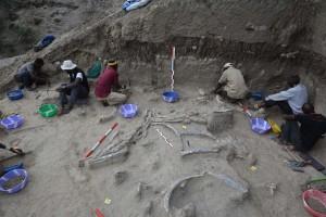 El CENIEH participa en un proyecto internacional en Olduvai sobre Homo erectus