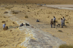 Hallado en Arabia Saudí uno de los fósiles humanos modernos más antiguos de Asia