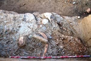 VI Campaña de excavaciones en el yacimiento paleolítico de Ambrona