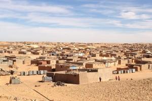 Fernando Pinto presenta mañana en el MEH una charla sobre el pueblo de Saharaui