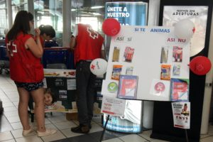 Cruz Roja y la Fundación Carrefour ponen en marcha una nueva edición de la Vuelta al Cole Solidaria