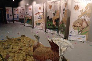 Fundación Cajacírculo y Fundación Oxigeno presentan la exposición Ecofrikis