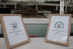 El MEH recibe por quinto año consecutivo el 'Certificado de Excelencia' de 'TripAdvisor' y entra el 'Salón de la Fama' de este portal web