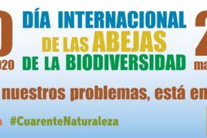 Día Mundial de las Abejas y Día Mundial de la Biodiversidad el 20 y 22 de mayo
