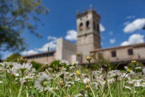 La UBU renueva su compromiso ecológico y sostenible en el Día del Medio Ambiente