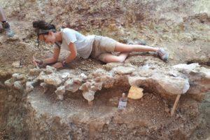 Entre los días 15 y 30 de julio se realizará la XVII campaña de excavaciónes paleontológicas en la Sierra de la Demanda