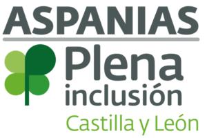 Aspanias pone en marcha el IV Campamento Urbano de Ocio Inclusivo
