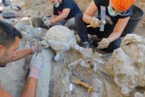 Balance final de la 4ª campaña de excavaciones en Torrelara (Burgos)