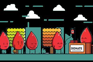 La Hermandad de Donantes de Sangre, el Centro de Hemodonación y la Universidad de Burgos organizan una campaña de donación de sangre en diferentes centros de la Universidad