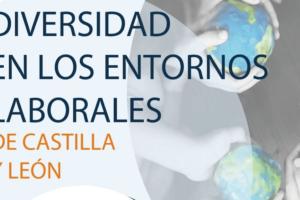 La Red Acoge realizó sus Jornadas Diversidad en los entornos laborales de Castilla y León