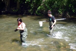 La Universidad de Burgos forma a más de 400 científicos y científicas ciudadanas para estudiar y conocer la calidad de los ríos burgaleses