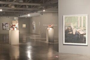 Fundación Cajacírculo prolonga hasta el próximo 11 de abril la exposición de Simon Edmondson
