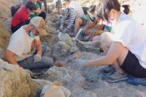 Nueva campaña de excavaciones de dinosaurios en la Sierra de la Demanda