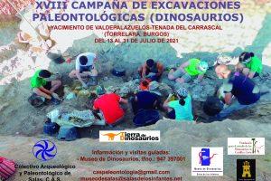 Fechas y horarios para visitar las excavaciones del yacimiento de dinosaurios en Torrelara