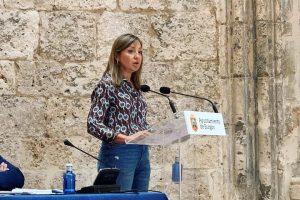 El PP pide que el Ayuntamiento de Burgos elabore un Código de Buen  Gobierno ante la falta de transparencia e imposición del bipartito