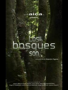 los-bosques-son